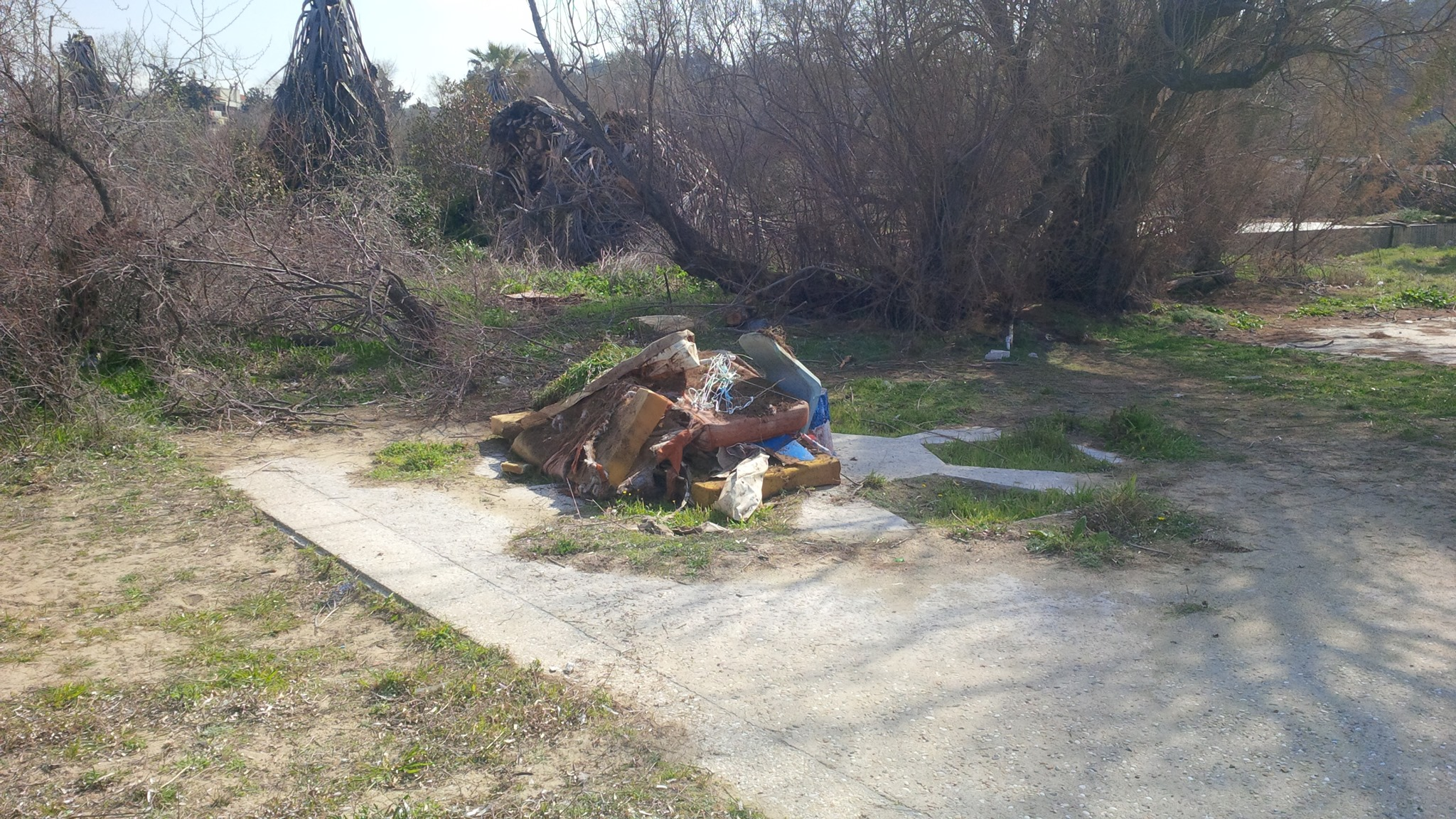 ΤΩΡΑ: Εθελοντική δράση καθαρισμού σε Αγία Τριάδα- Αύριο στα Πάλιουρα