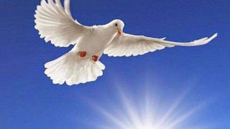 Χρόνια Πολλά! Το Αγιο Πνεύμα μαζί μας!