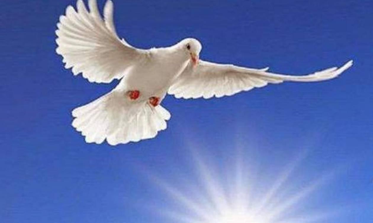 """Σύσταση Περιφέρειας: """"Να τηρηθεί η αργία του Αγίου Πνεύματος"""""""