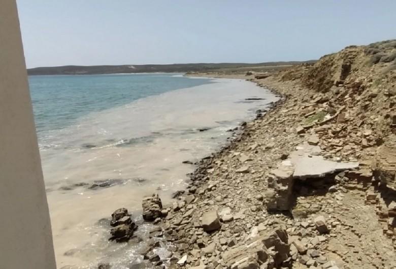 Ανησυχία και στα μέρη μας για τη θαλάσσια βλέννα-Εφτασε στη Λήμνο (BINTEO)