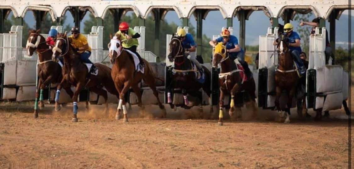Τα κορυφαία άλογα της Μακεδονίας τρέχουν την Κυριακή στην Επανομή!