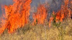 Μεσημέρι: Εκαιγε χόρτα και του ξέφυγε η φωτιά