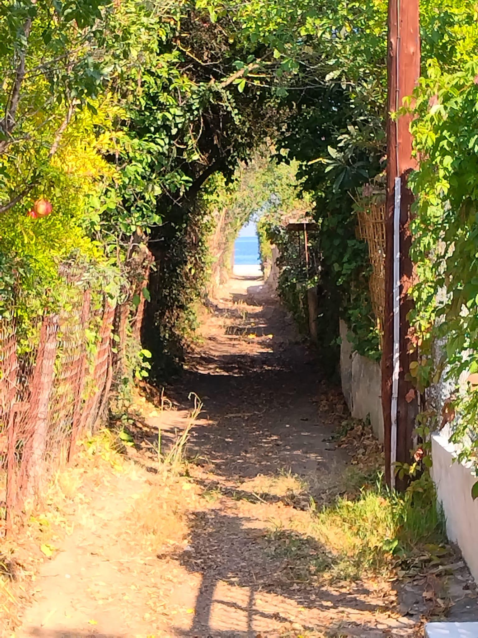 Οδός Ανθέων-Βίλα Μπιάνκα: Αποκαταστάθηκε η δίοδος προς τη θάλασσα